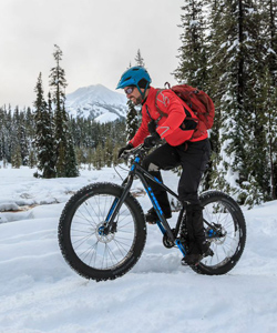 fat-bike-bachelor